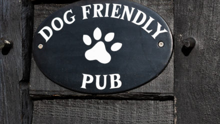 Photo of Dog Friendly Pub!