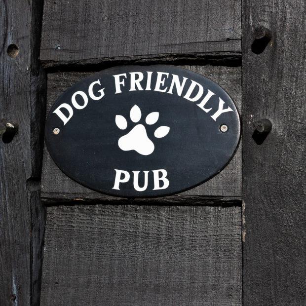 Image for Dog-friendly Pub